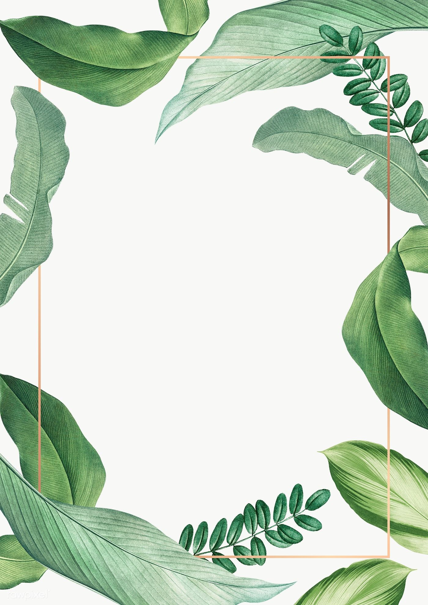 Hand Drawn Tropical Leaves White Poster Transparent Png Free