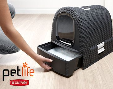 Small Cat Litter Box Furniture Because Your Cats