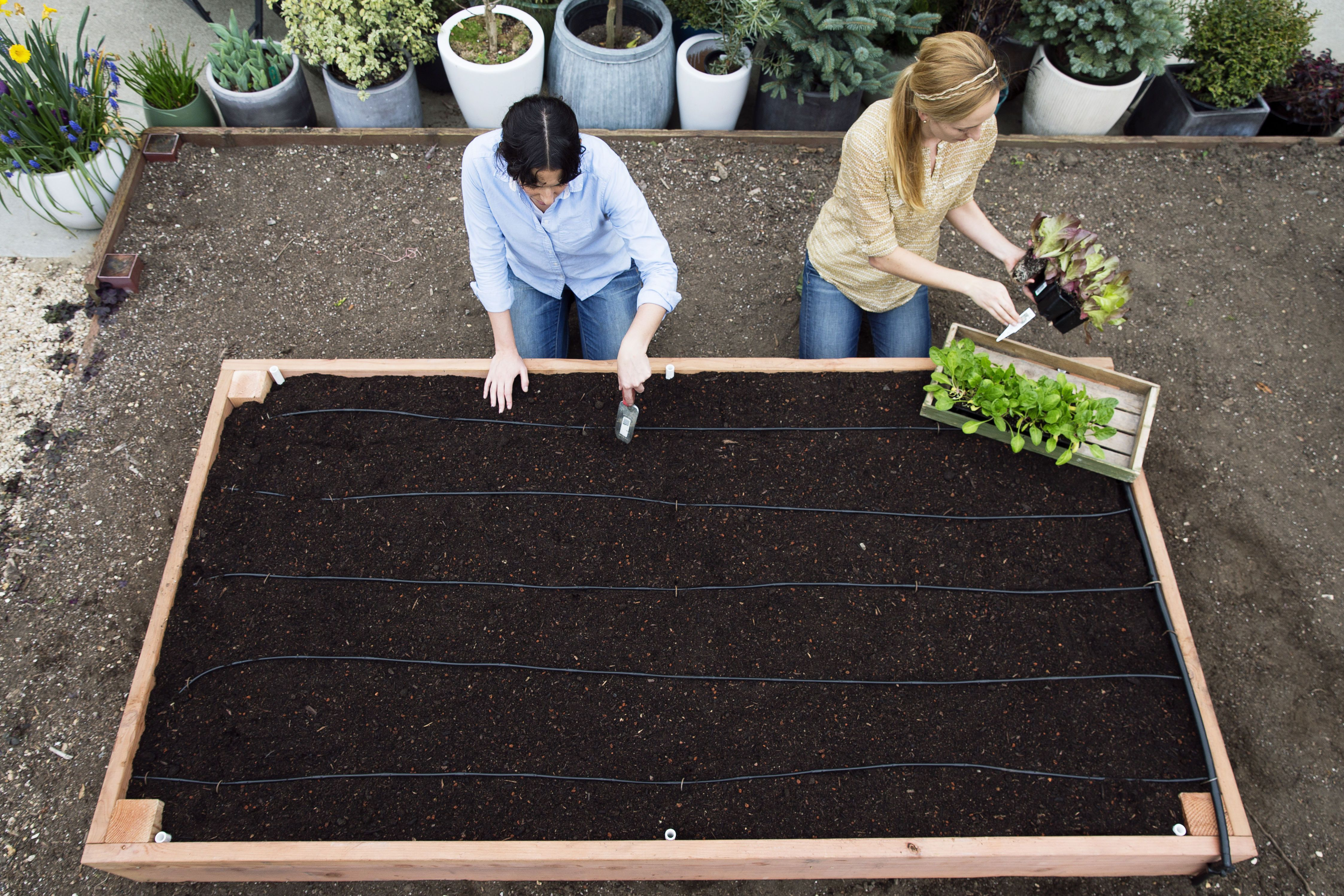 Stepbystep build the ultimate raised bed raised bed gardens