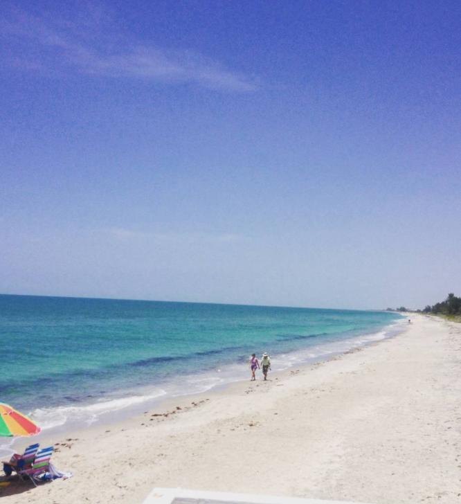 Take a relaxing walk on Manasota Key looking for shark ...