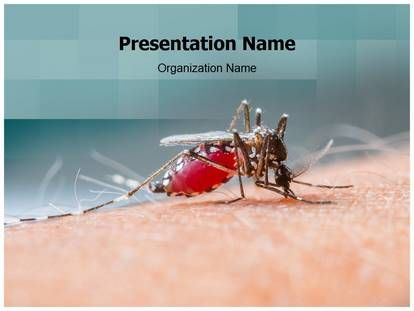 Malaria Mosquito PowerPoint Template Background ...