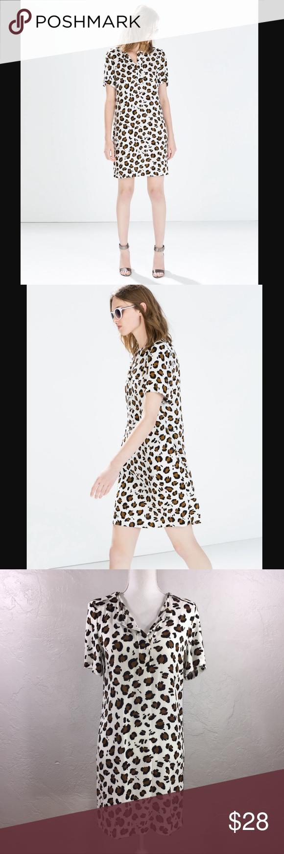 Zara White Animal Print Shift Dress Printed Shift Dress Dresses Clothes Design [ 1740 x 580 Pixel ]