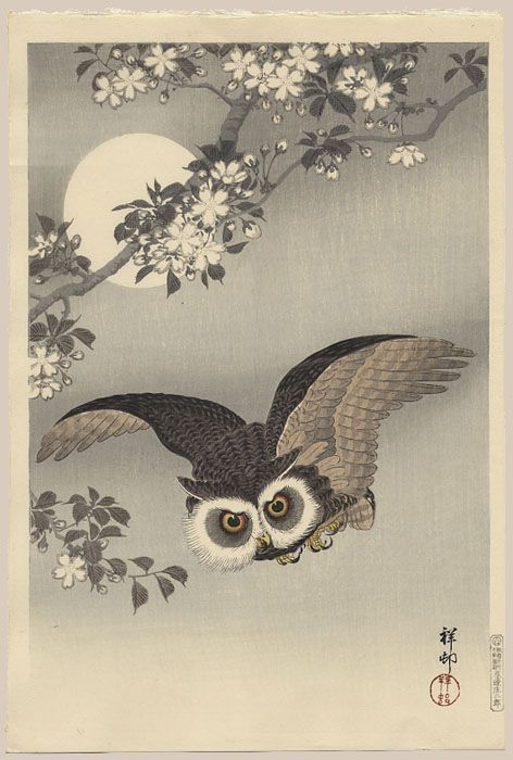 """""""Scops Owl Under Cherry Blossoms and Full Moon"""" by Shoson"""