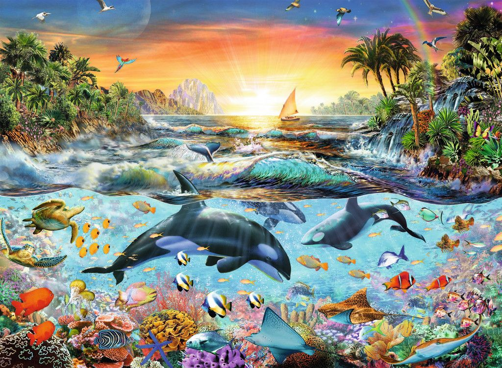 Orca Paradise 2d Puzzles New Shop Us Pictures Painting Underwater Art