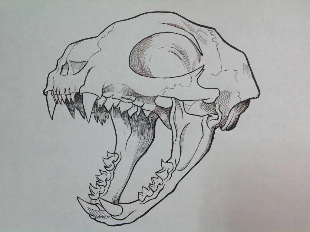 pin by pinfire on art pinterest tattoo drawings and sketches