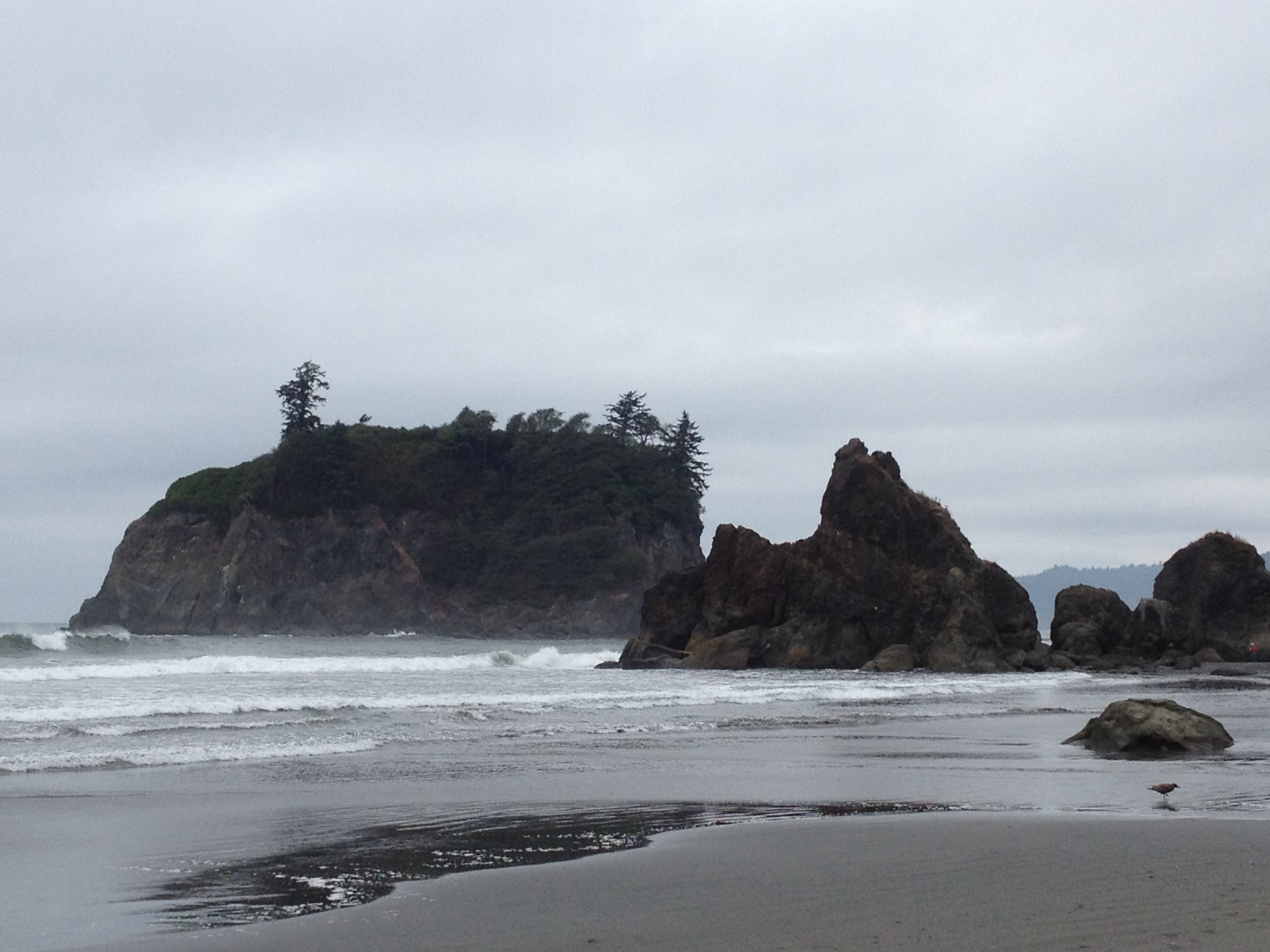 Beau Cloudy Day On Ruby Beach, Olympic National Park, Washington State