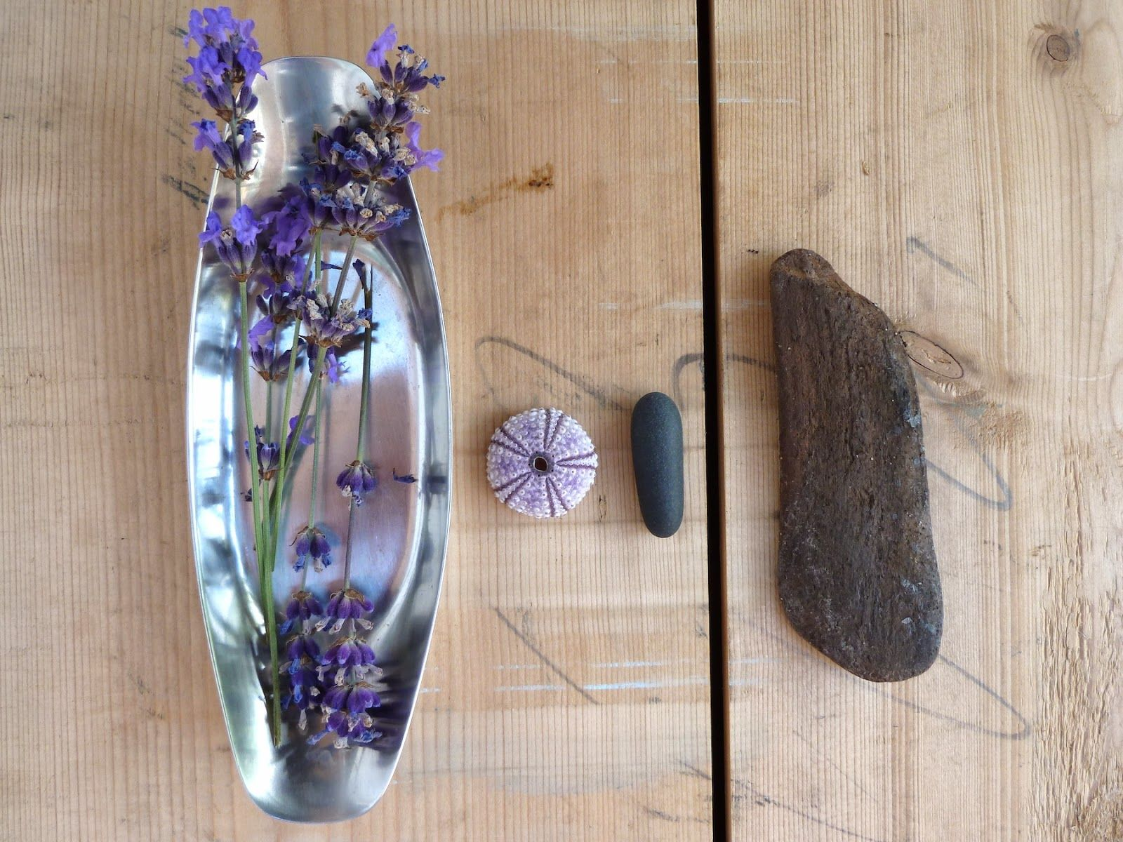 Lavendel - zartes violett