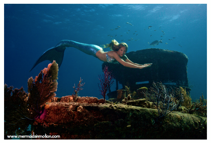 http://prafulla.net/wp-content/sharenreadfiles/2013/04/415363/Linden-Wolbert-Underwater-Mermaid-Model-and-Her-USD-15000-Silicone-Tail-2.png