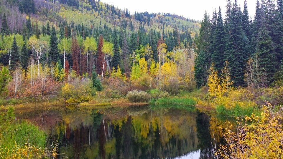 Fall in Steamboat Springs