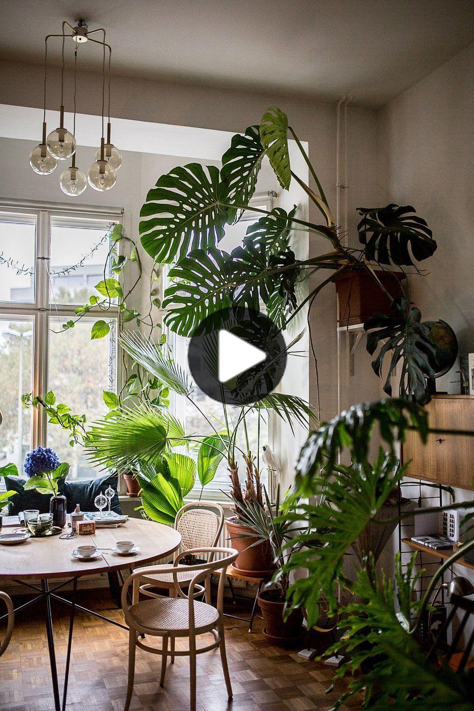 Auf eine Tasse Tee bei Tim Labenda in 10  Plants, Garden room