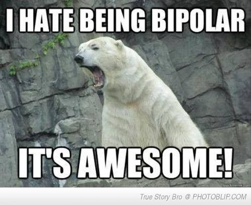 Funny Zoo Memes : Bipolar bear. maybe it's late ..maybe this is just really fucking