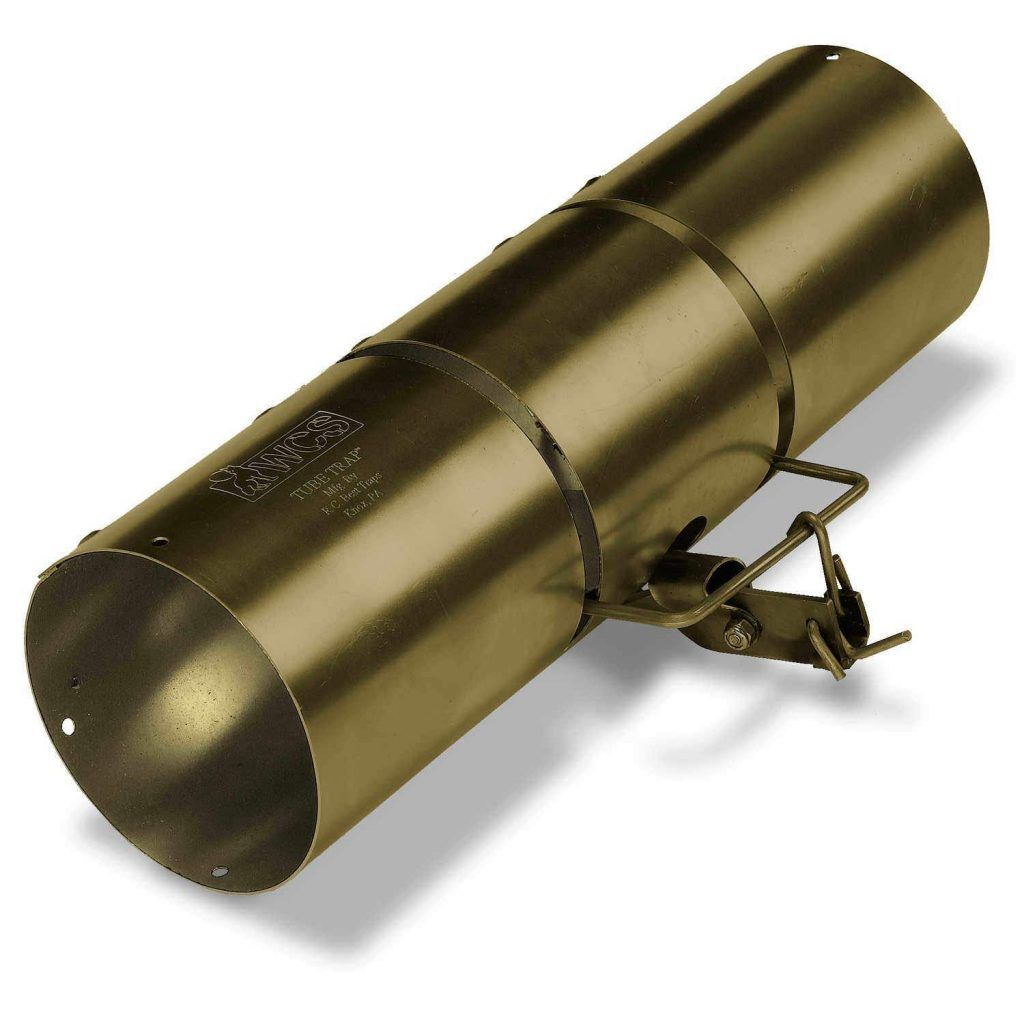 Lethal Squirrel Traps For Attic Traps Rust Resistant Forestry
