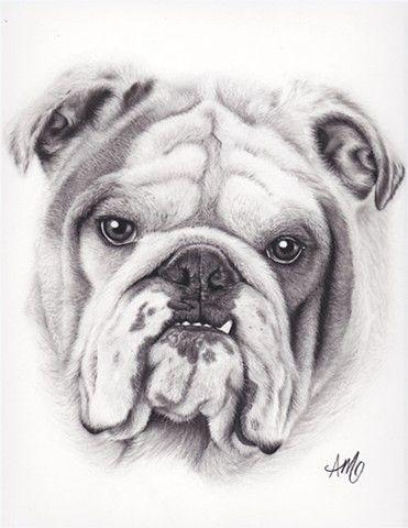 Charcoal Portraits Pets And Kids Dog Portrait Drawing English Bulldog Art Bulldog Drawing