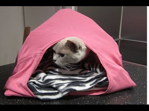Anleitung Um Eine Katzenhöhle Zu Filzen Cat Cave Youtube Hobby