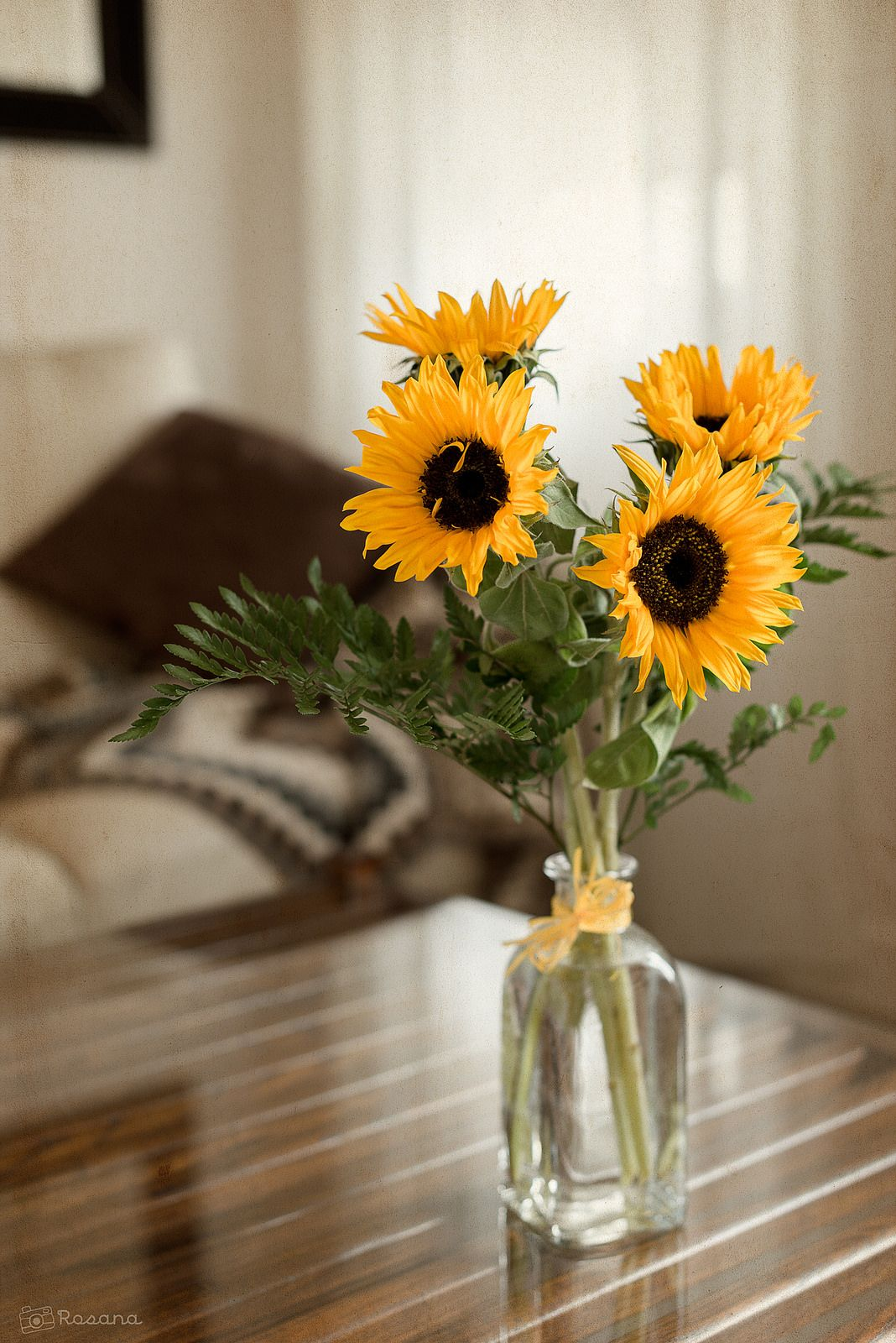 Sunflowers Sunflower, Beautiful blooms, Flowers