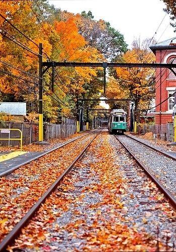 Ride A Train From New York To Boston Fall Foliage Scenery Fall