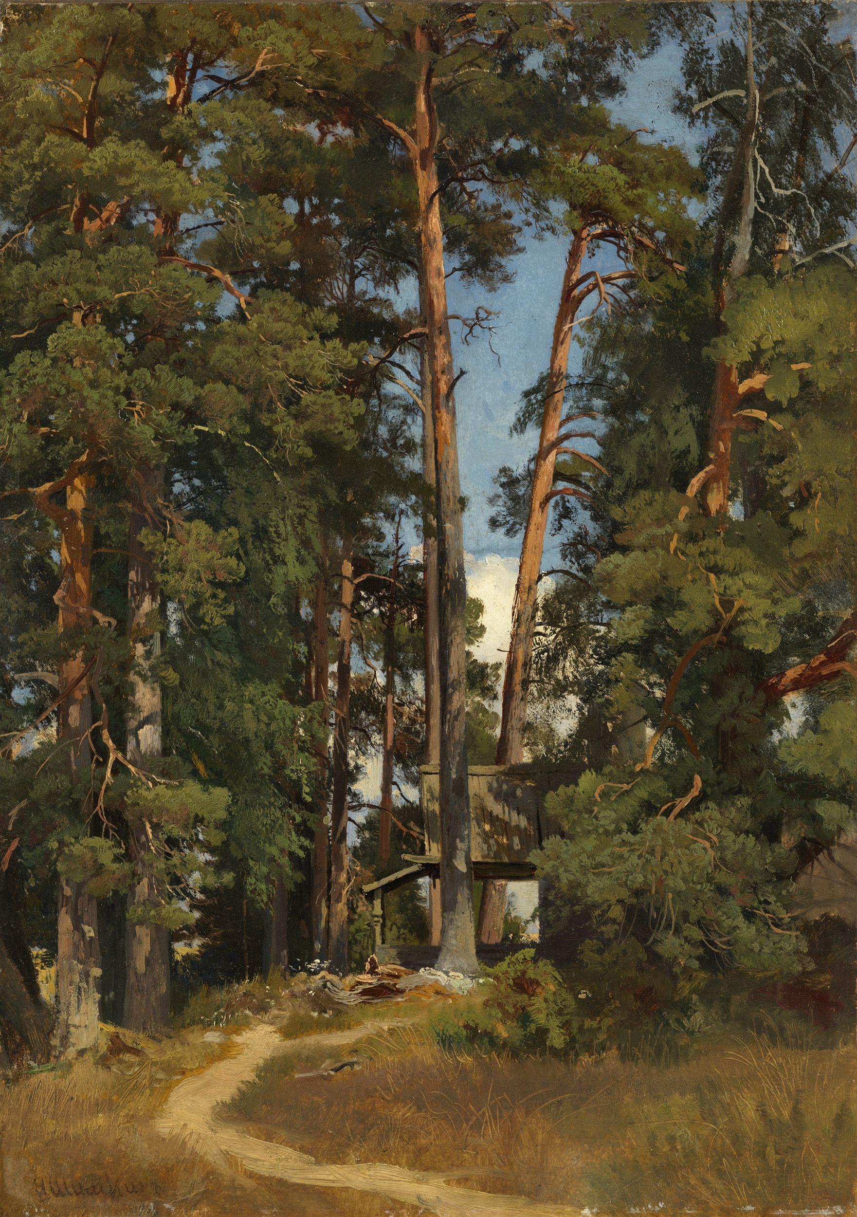 Oak Woods By Ivan Shishkin Fine art print NEW