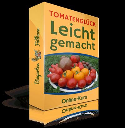 Eines der schönsten Erlebnisse im Garten oder auf dem Balkon ist der Anbau und die Ernte von eigenen Tomaten. Es gehört für mich zu den unverzichtbaren Freuden des Sommers, jeden Tag eine Schüssel mit erntefrischen, köstlichen Tomaten ins Haus zu tragen. Wenn auch Du denselben Genuss im Sommer erleben möchtest, dann erfährst Du hier Anleitungen zur Anzucht.