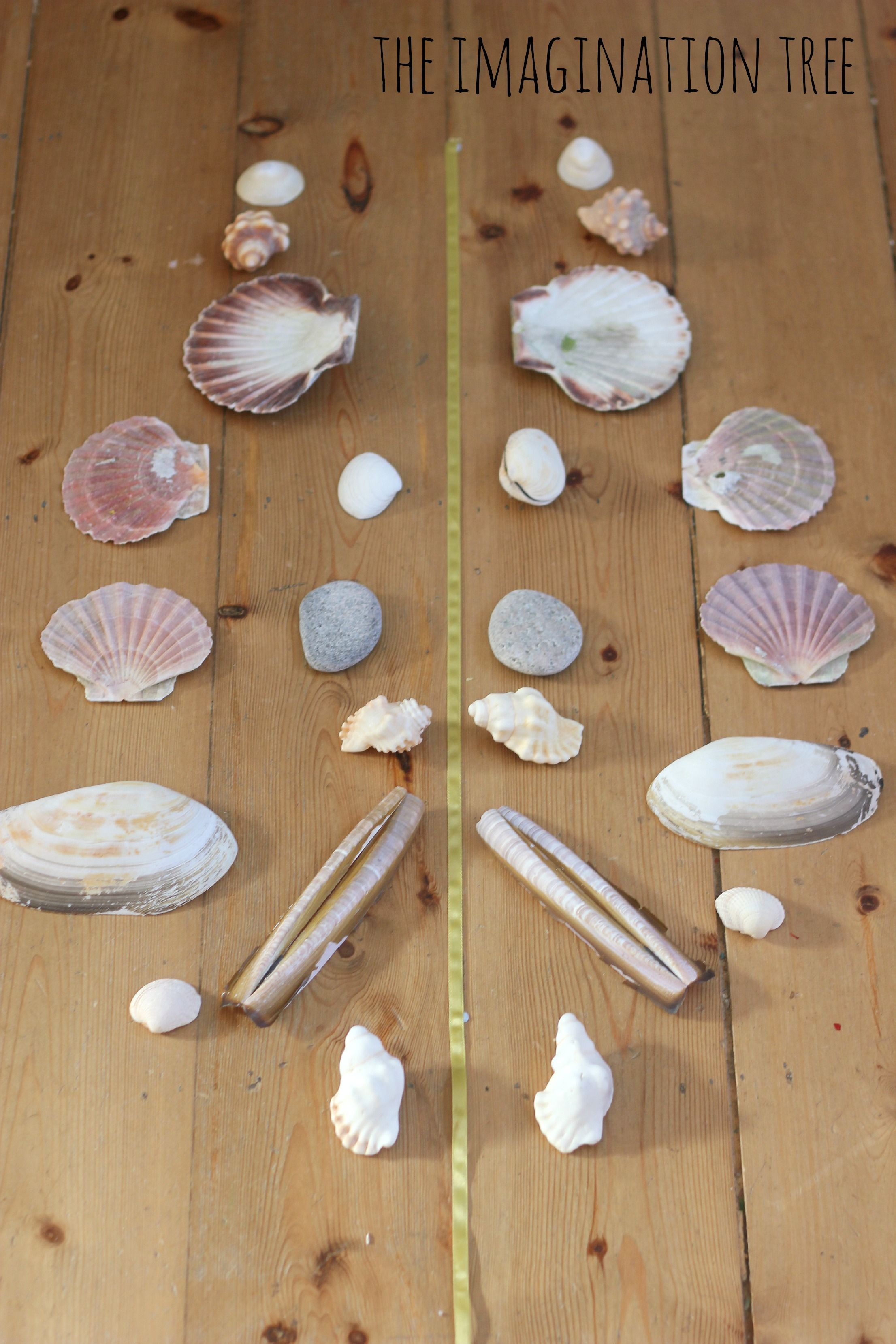 Symmetrical Pattern Making With Natural Materials Shell
