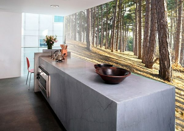 fototapete küche wandgestaltung waldmotive arbeitsplatte ...