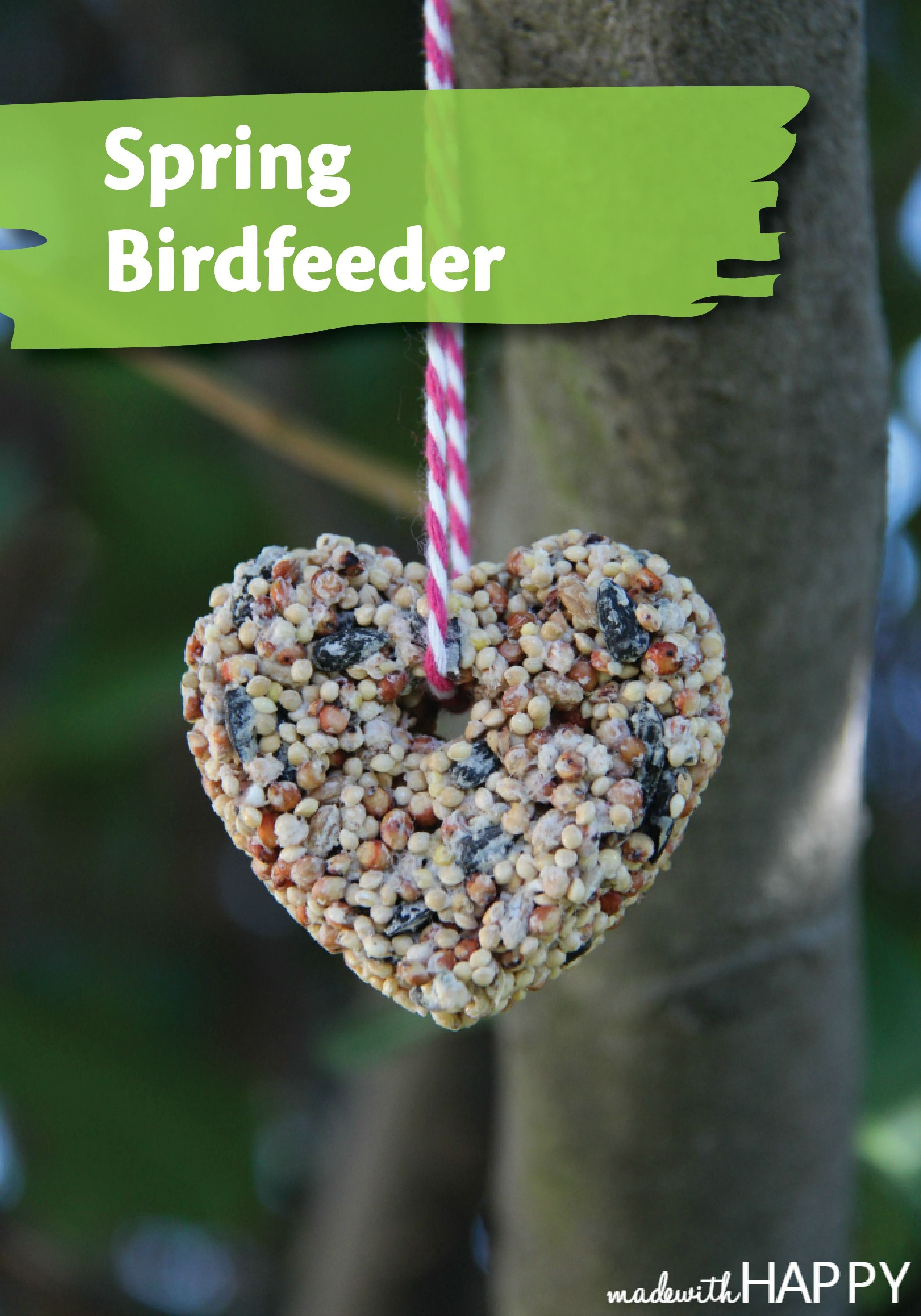 This adorable hanging bird feeder is a great spring craft to share with your kids!
