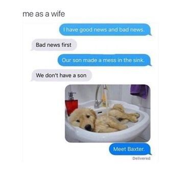 9 Times Wives Told Their Husband That  They Now Own A Puppy