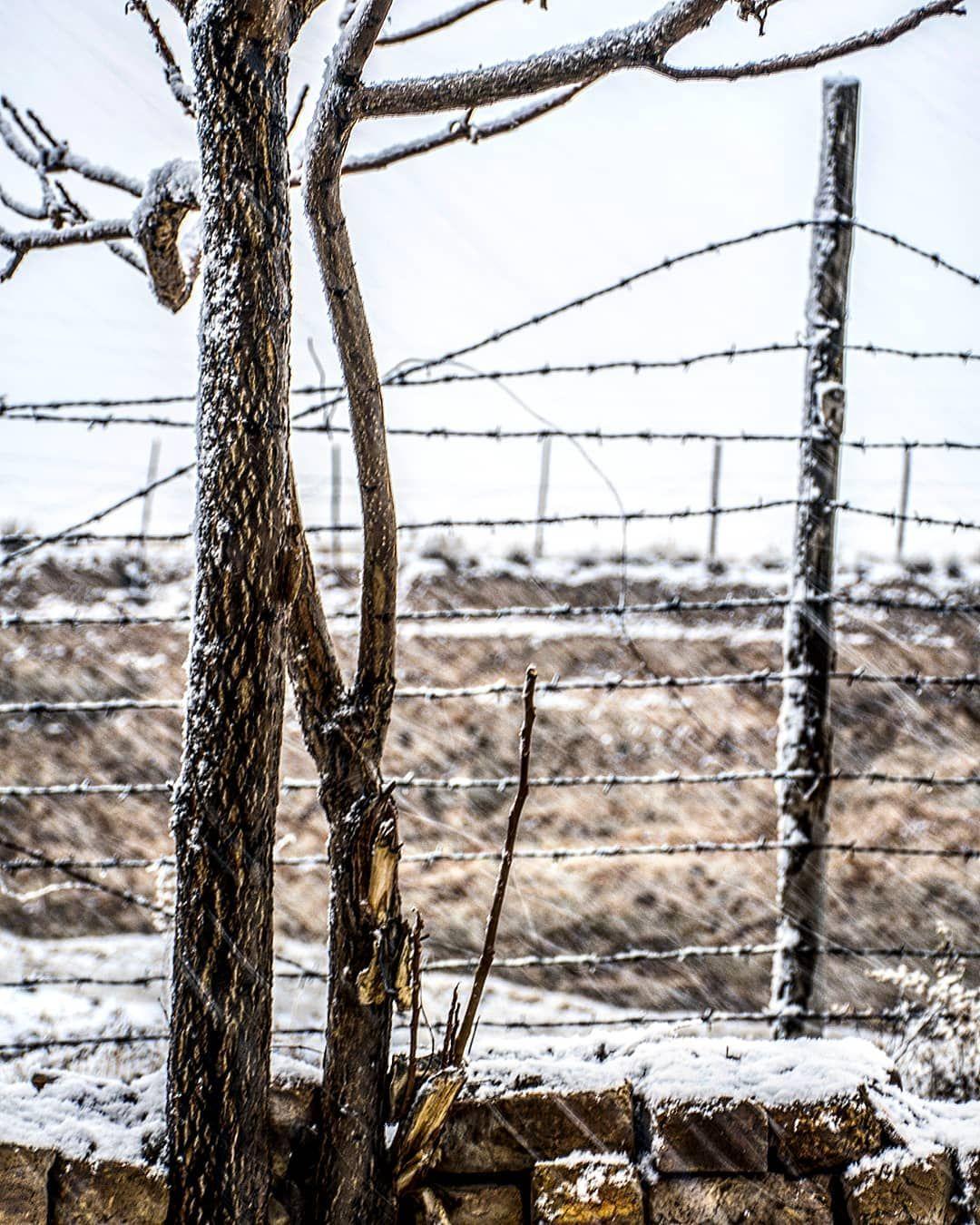 حال سرمای زمستان را بچشیم در خش خش نشنیده ی پاییز. | Instagram ...