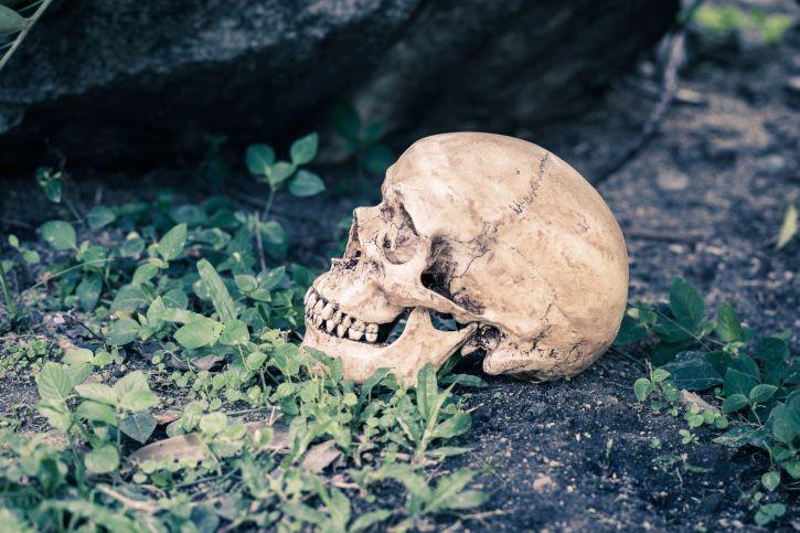 02/29/2016 Brooklyn — Police say human skeletal remains