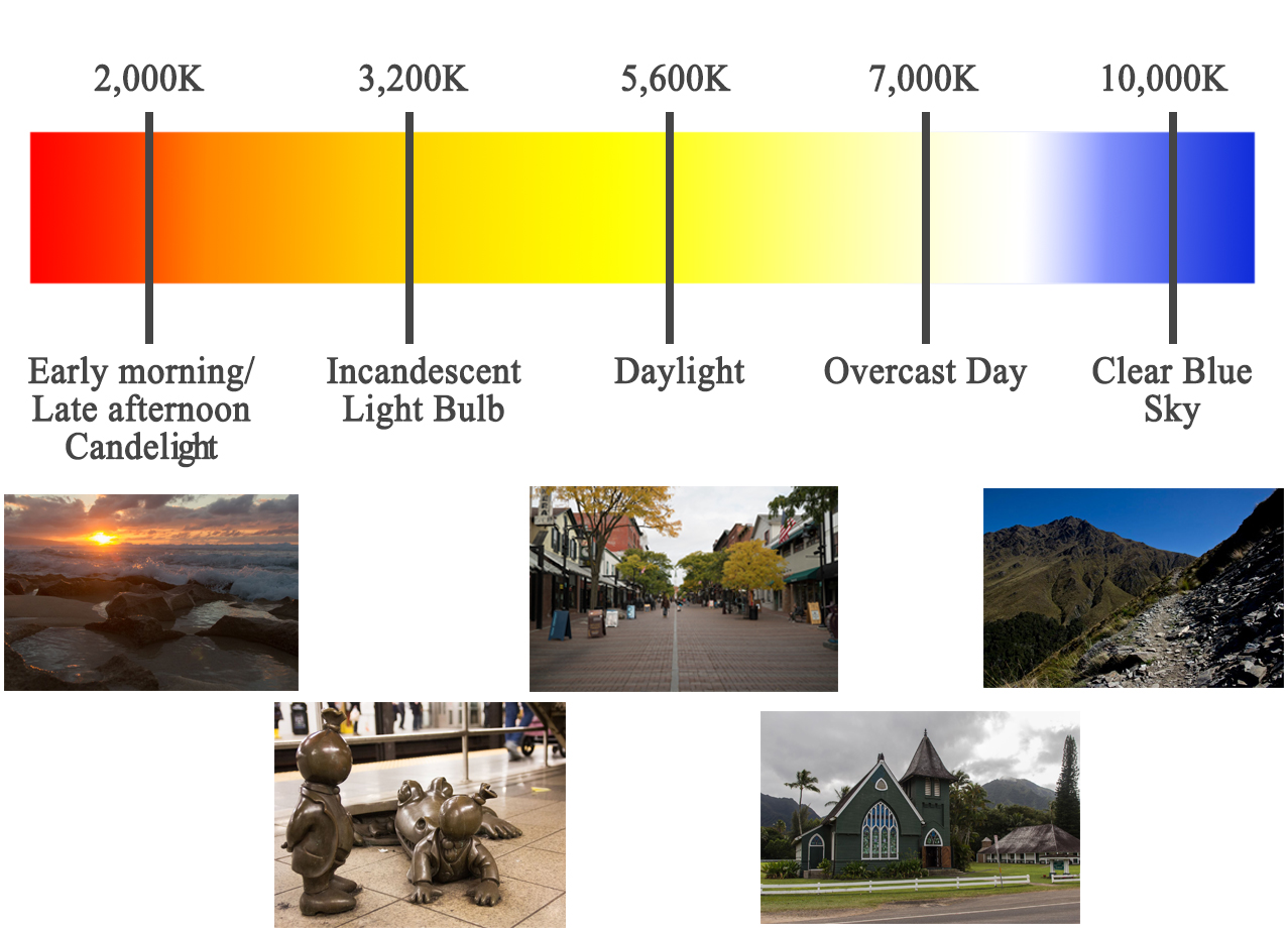 Image result for Getting the Color Right in the Camera Photography