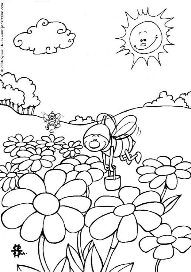 Coloriage d une abeille dans un champ de fleurs portant des seaux de miel un coloriage amusant - Coloriage abeille ...