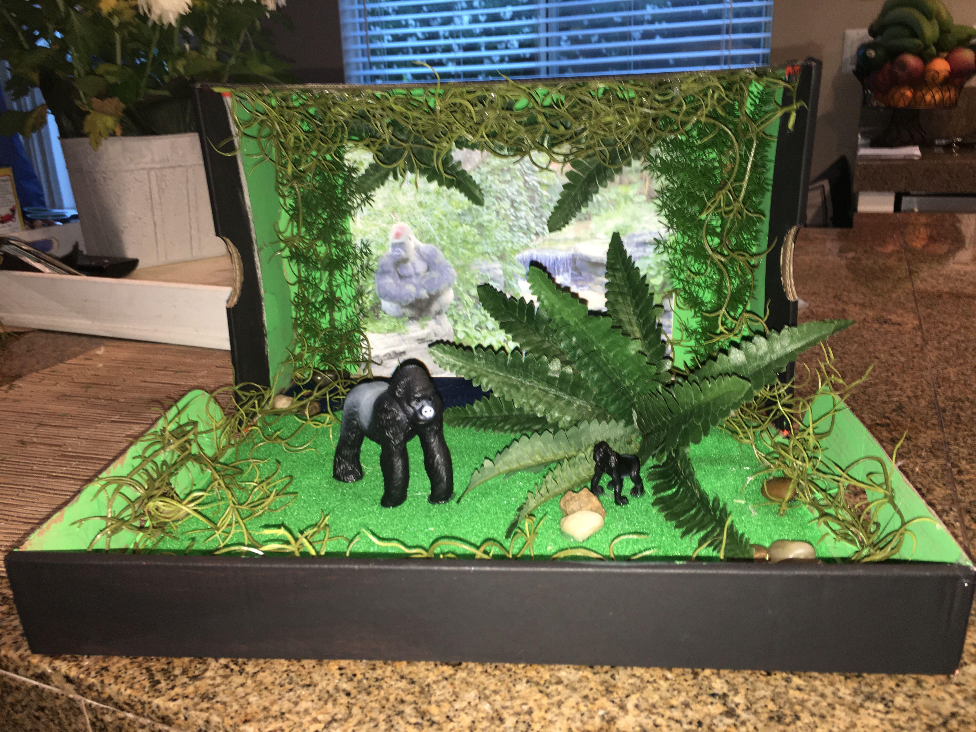 Gorilla Habitat Diorama