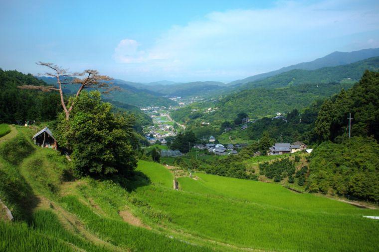 17 Amazing Rural Korea Getaways - Hedgers Abroad   South korea travel, Korea travel, Rural