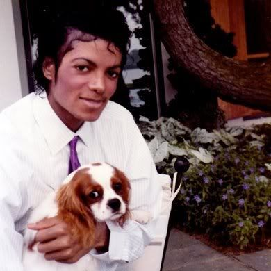 Michael Jackson Pictures 3 by Sheila Delva (page 21) | Photobucket #michaeljackson