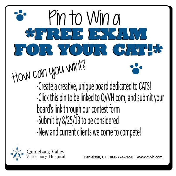 Can Be Use For A Dog Exam Too Two More Days To Enter Our