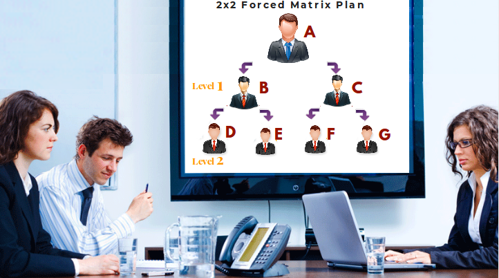 Working of 2x2 Forced Matrix Software - Infinite MLM Software | Web development design, Software development, Mlm