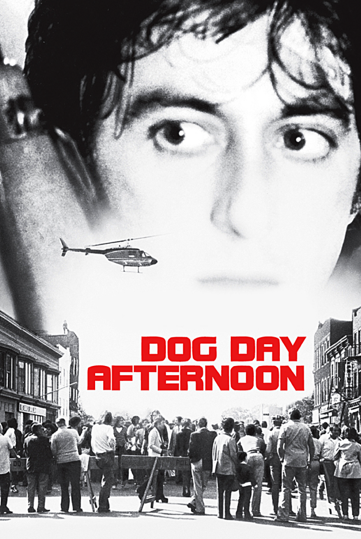 Dog Day Afternoon Anything Can Happen During The Dog Days Of