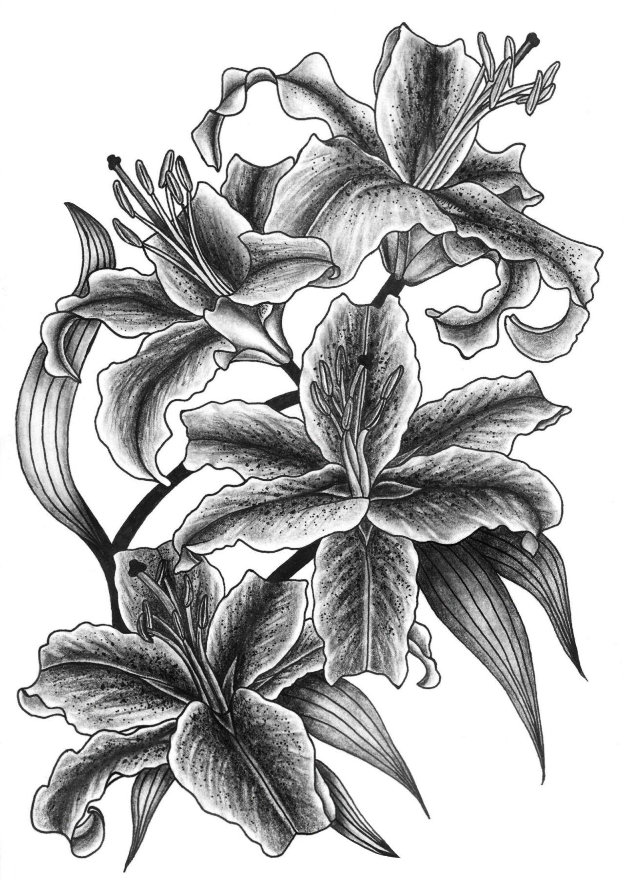 Jasmin Ekstrm Tattoo Idea Pinterest Floral Drawing Tattoo