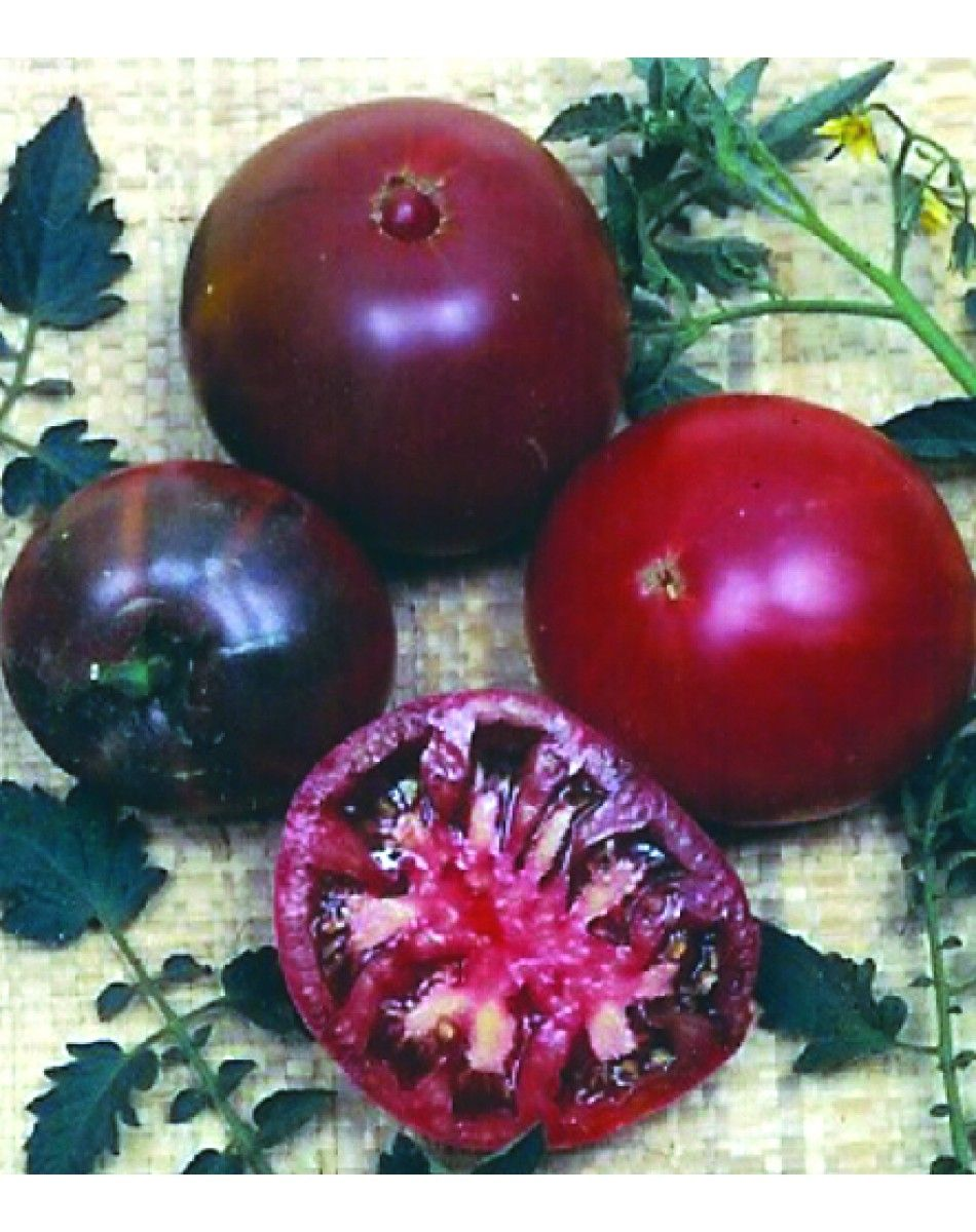 Black Krim Tomato Heirloom Growing Tomato Plants Tomato 400 x 300
