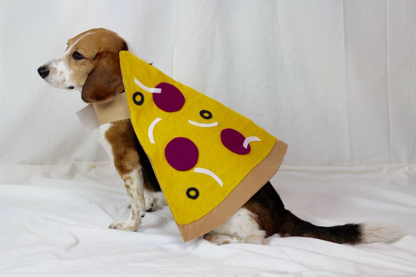 Diy Pizza Emoji Dog Halloween Costume Dog Costumes Diy Dog