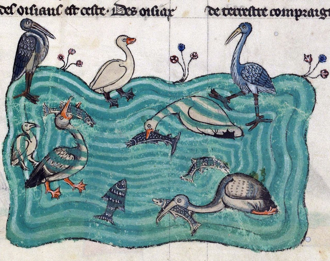 Image result for medieval manuscript water