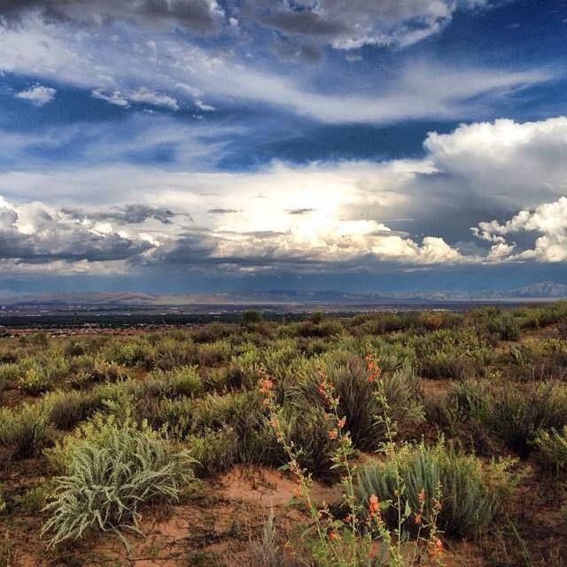 Lovely shot of the Sandias - Visit Albuquerque