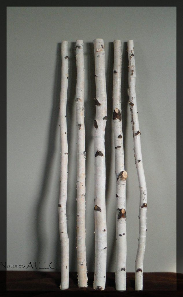 Decorative White Birch Sticks 3 Ft Lengths 5 Piece Set Shipping