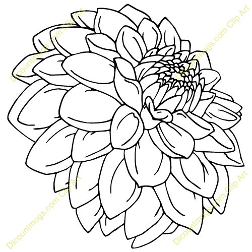 Cartoon Flower Line Drawing : Dahlia line drawing digi stamps pinterest