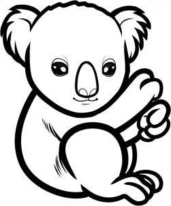 How To Draw A Baby Koala Baby Koala Step 6 Bear Drawing Bear Coloring Pages Baby Koala