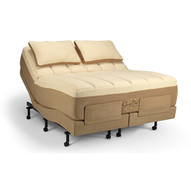 TempurPedic GrandBed Way too much to ever spend on a