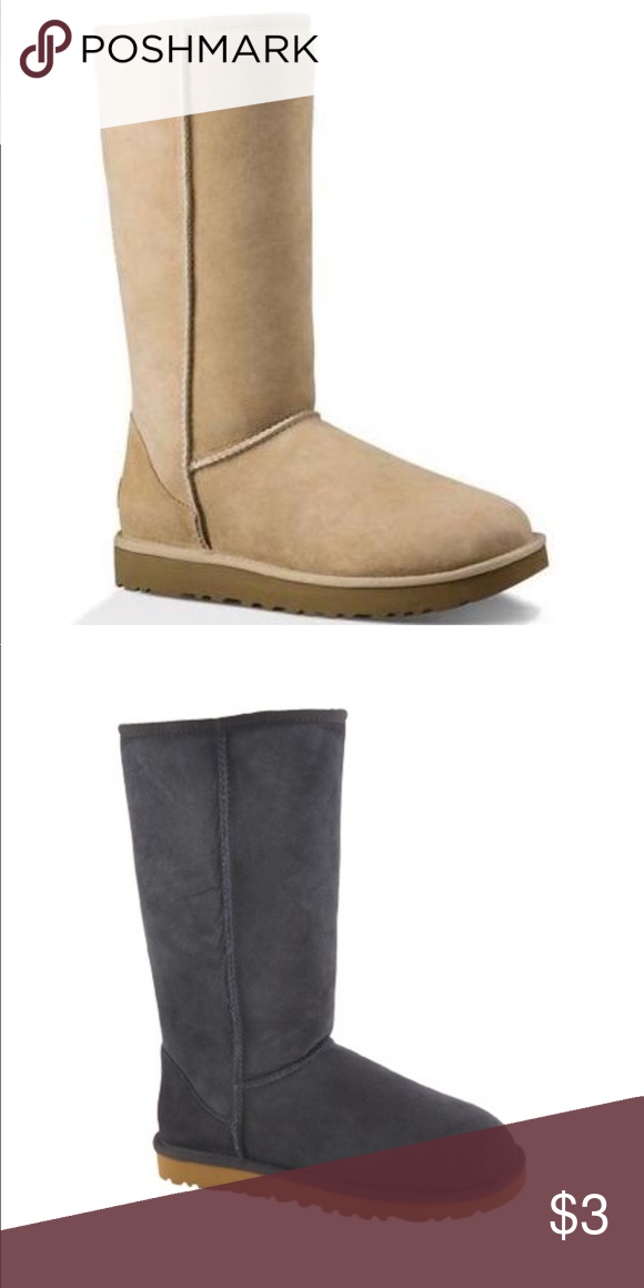 Ugg ISO Classic tall ugg boots in size 7 I need sand color and navy UGG