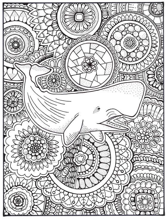 Whale Coloring Page, Coloring Book Pages, Printable Adult Coloring ...