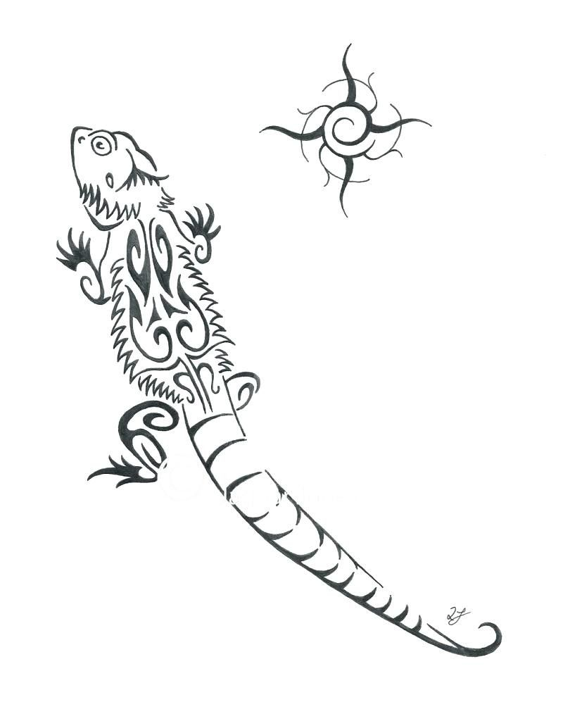 Bearded Dragon Coloring Page Youngandtae Com Dragon Coloring Page Bearded Dragon Colors Coloring Pages