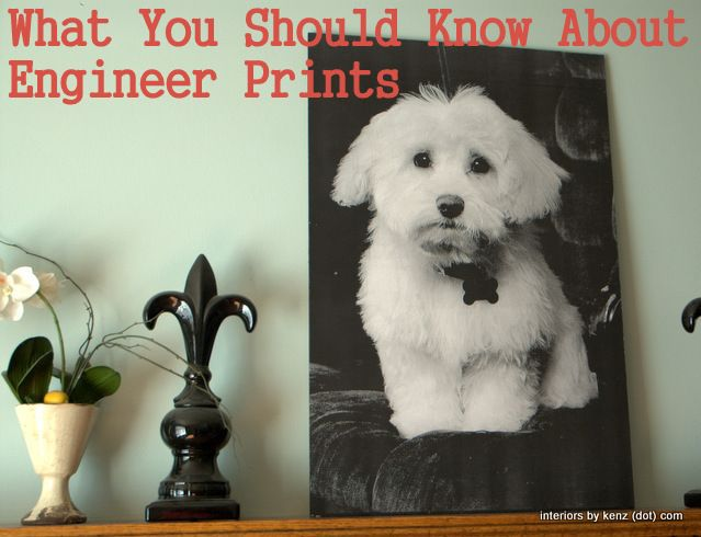 What You Should Know About Engineer Prints