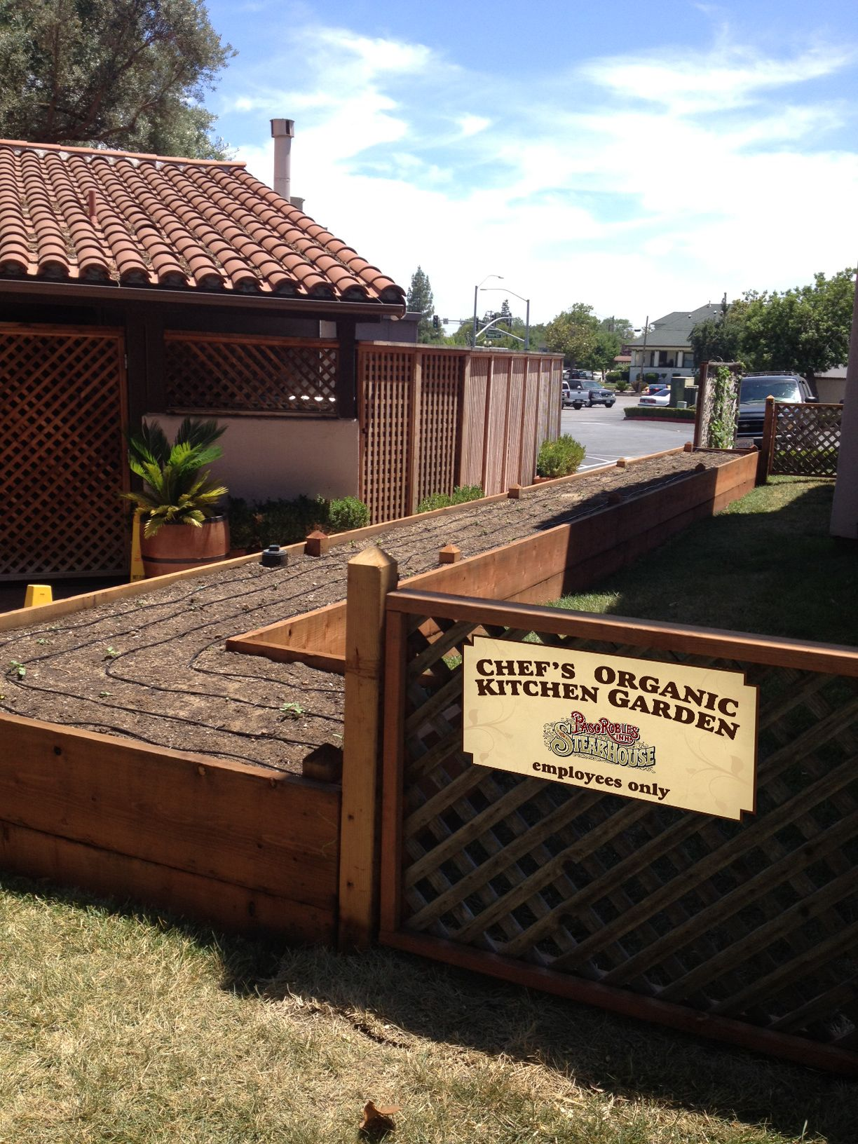 The beginning stages of our chef\'s garden.   Farm-to-Table ...